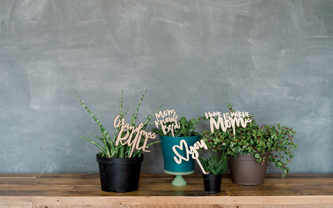 Mothers day gift for moms who love plants, gardening Mothers day gift, the best mothers day gift 2018, mothers day planter sticks, Mothers day gifts for grandma, oh yay studio shop