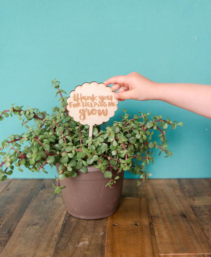 end of the year teacher gift, teacher gift idea, principal gift ideas, wooden teacher gift, plant teacher gift, oh yay studio, planter stick oh yay studio