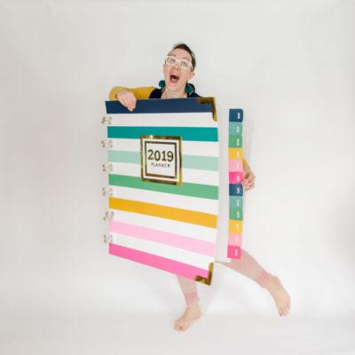 DIY costume, how to make a planner costume, Simplified planner costume, Emily ley planner costume, DIY halloween costume, easy DIY costume